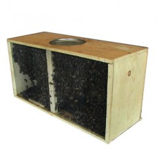 3lb Carniolan Package Bees